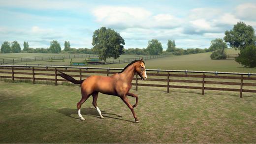 Juego de caballo